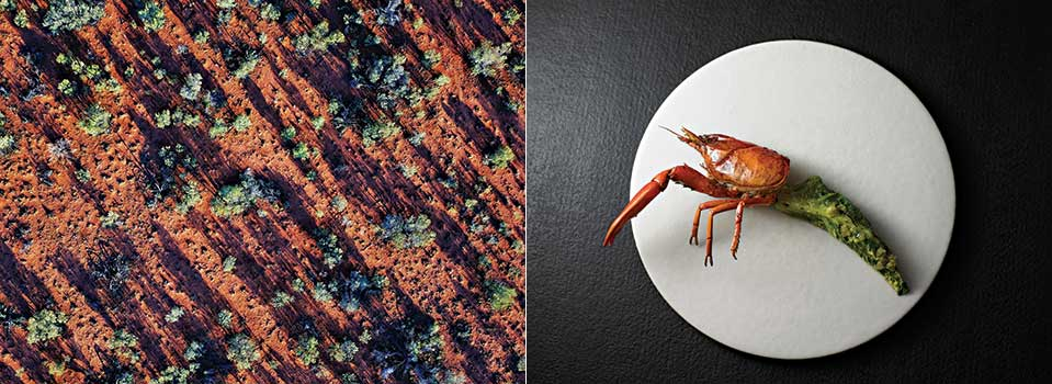 Does Australia have a national cuisine? | Open Skies Article