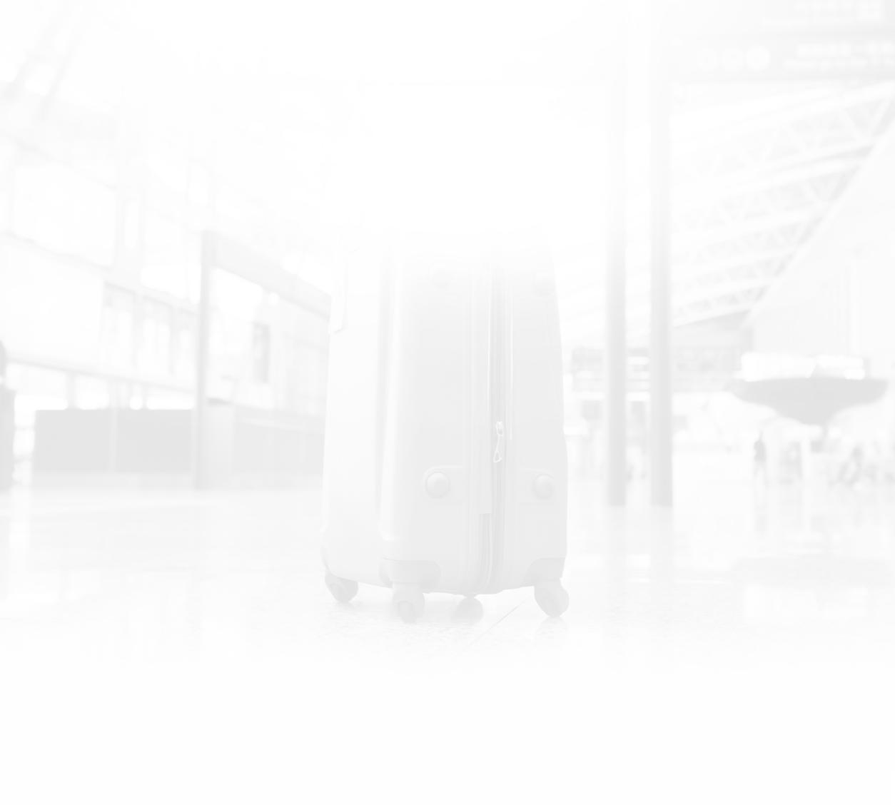 détaillant en ligne d9032 222e4 Bagages enregistrés | Bagages | Avant le départ | Emirates ...