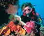 Plongée sous-marine à Dubai