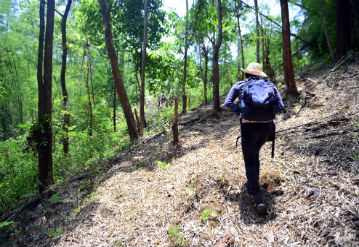 Walking the Hill-tribe Path, Thailand