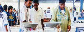 Deira Fish Market, Dubai