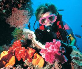 두바이 다이빙
