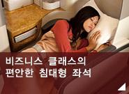 편안한 비즈니스 클래스의 침대형 좌석