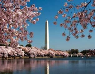 الرحلات إلى واشنطن العاصمة