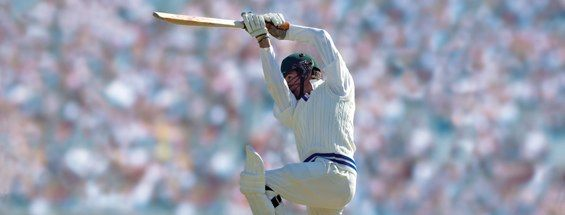 Cricket