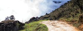 Walking with Giants: Trekking in India