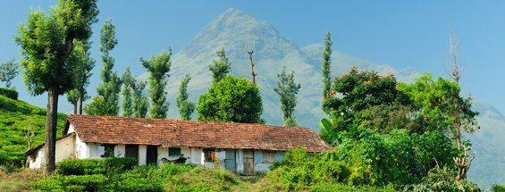 Vols vers Kozhikode