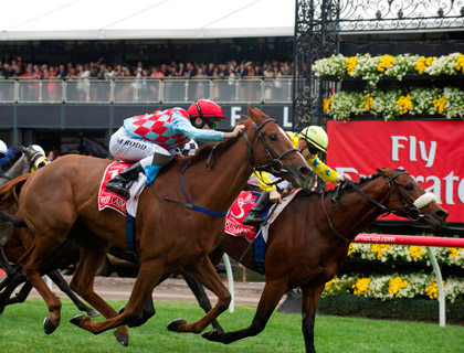 Dunaden – with Christophe Lemaire at the reins – crosses the line to win the 2011 Emirates Melbourne Cup.