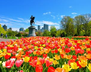 Vols à destination de Boston aux États-Unis
