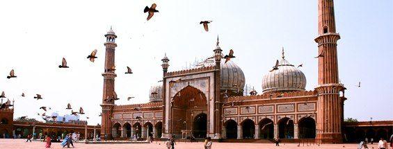 Flights to Delhi