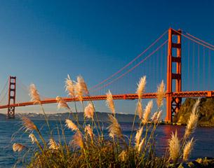 Flights to San Francisco, California, USA
