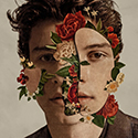 Shawn Mendes—Shawn Mendes