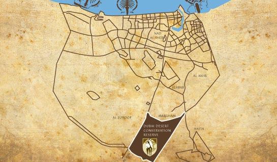 Dubai Desert Conservation Reserve